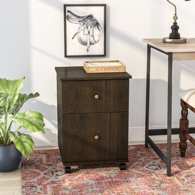 Beaver Creek 2 Drawer Mobile Vertical Filing Cabinet