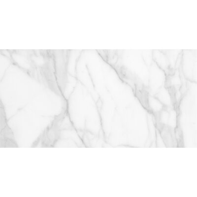 "Quest 12"" x 24"" Porcelain Field Tile in Matte White"
