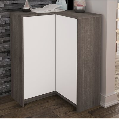 2 Door Accent Cabinet Color: Bark Gray/White