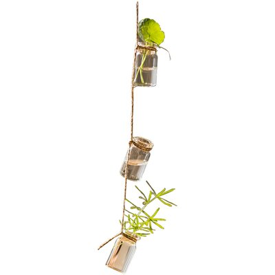 Frazee Rustic Rope Glass Hanging Planter