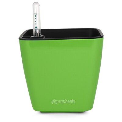 Azalea Self Watering Plastic Pot Planter Color: Green