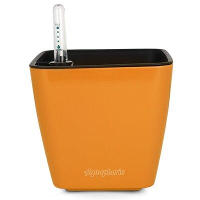 Azalea Self Watering Plastic Pot Planter Color: Orange