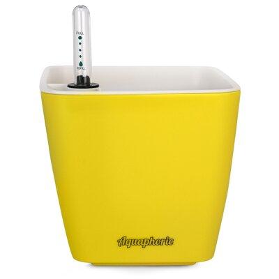 Azalea Self Watering Plastic Pot Planter Color: Yellow