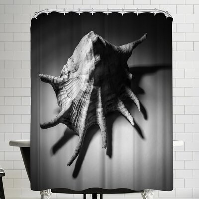 Annie Bailey Shell Number II Shower Curtain