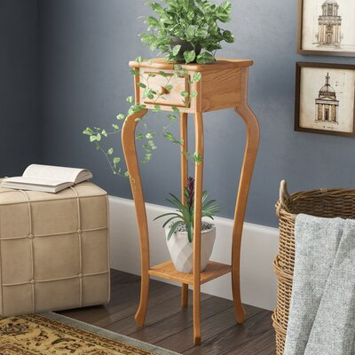 Procter Multi-Tiered Plant Stand Color: Oak