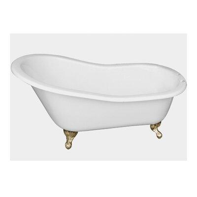 "61 x 31"" Freestanding Soaking Bathtub Feet Finish: Polished Brass"