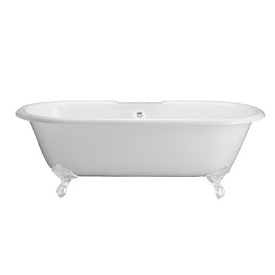 "67"" x 31"" Freestanding Soaking Bathtub Feet Finish: White"