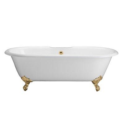 "67"" x 31"" Freestanding Soaking Bathtub Feet Finish: Polished Brass"