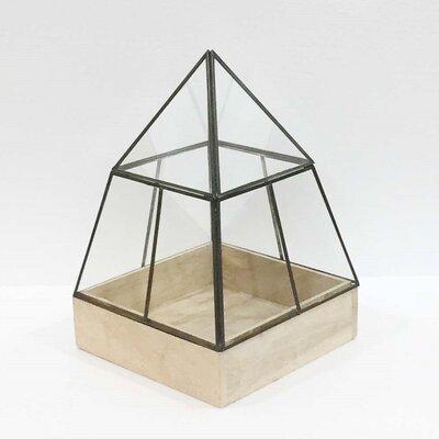 "Hesperia Pyramid Glass Terrarium Size: 16"" H x 20"" W x 20"" D"