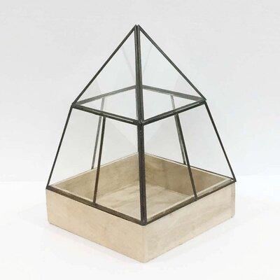 "Hesperia Pyramid Glass Terrarium Size: 20"" H x 24"" W x 24"" D"