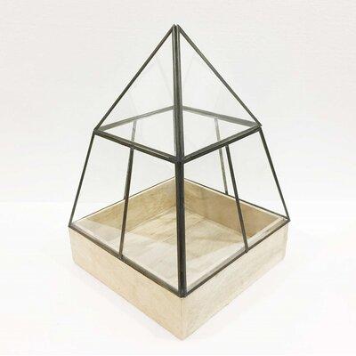 "Hesperia Pyramid Glass Terrarium Size: 24"" H x 15"" W x 15"" D"