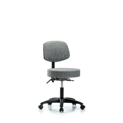 Seraphina Height Adjustable Lab Stool Foot Type: Casters, Seat Color: Gray