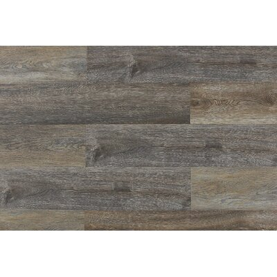 "Aditya 8"" x 71"" x 12mm Laminate Flooring in Belluno"
