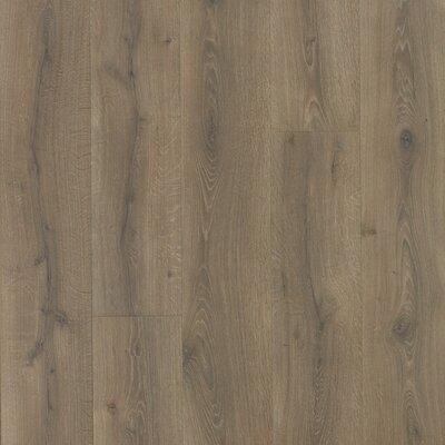"Colossia 10"" x 80"" x 10mm Oak Laminate Flooring in Pelzer"