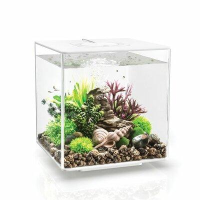 """LED Aquarium Tank Size: 13.6"""" H x 12.6"""" W x 12.6"""" D, Color/Finish: White"""