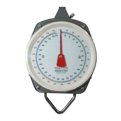 Outdoor 550 Pound Capacity Hanging Displays Weight Scale