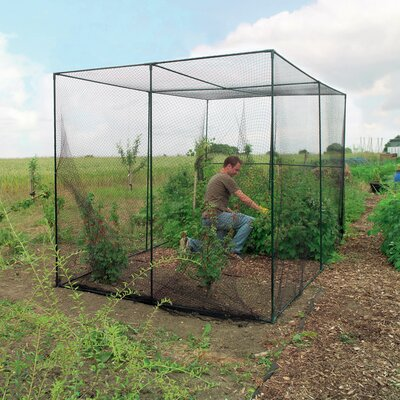 6.6 Ft. W x 9.1 Ft. D Hobby Greenhouse