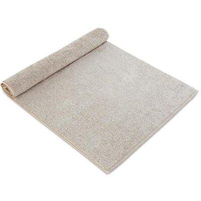 Chism Absorbent Cotton Bath Rug Color: Beige