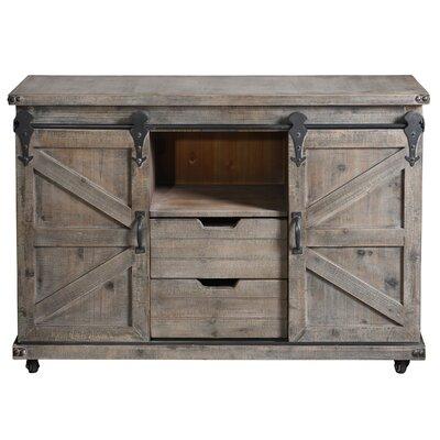 Magnus 2 Door Accent Cabinet Color: Driftwood Gray