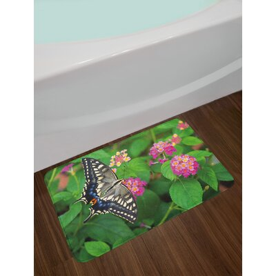 Rare Green Pink Black Swallowtail Butterfly Bath Rug