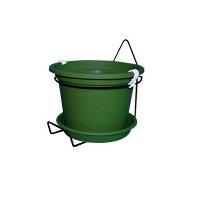 Gefen Plastic Wall Planter Color: Dark Green