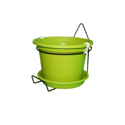 Gefen Plastic Wall Planter Color: Lime Green