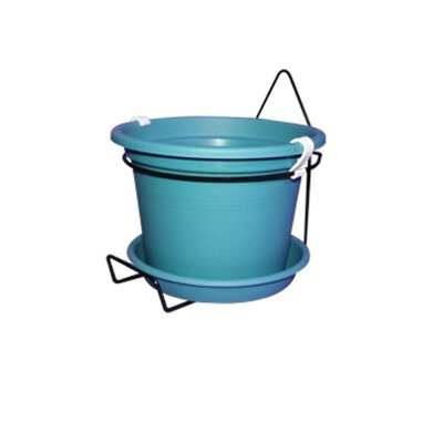 Gefen Plastic Wall Planter Color: Turquoise