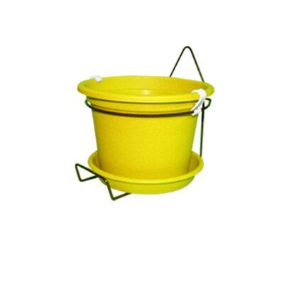 Gefen Plastic Wall Planter Color: Yellow