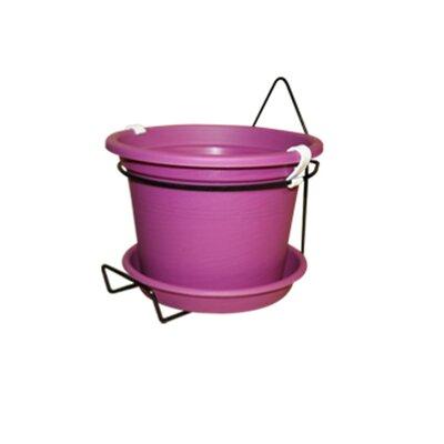 Gefen Plastic Wall Planter Color: Purple
