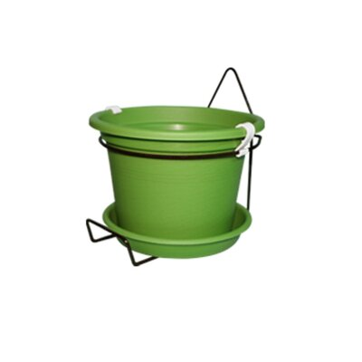 Gefen Plastic Wall Planter Color: Forest Green