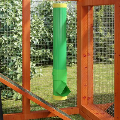 Gracie Precious Poultry Feeder and Waterers