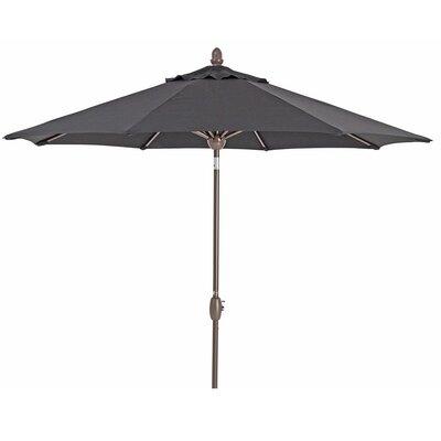 Ivanka Patio 9' Market Sunbrella Umbrella Fabric Color: Black
