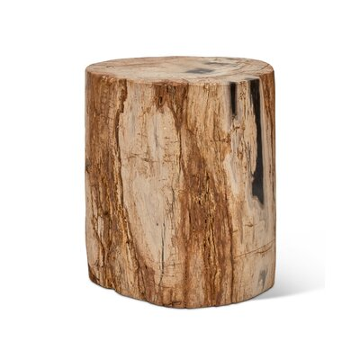 Elements Fully Polished Accent Stool Color: Natural Dark