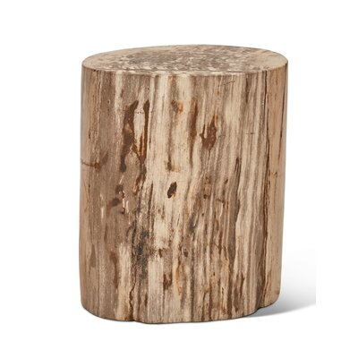 Elements Fully Polished Accent Stool Color: Natural Light