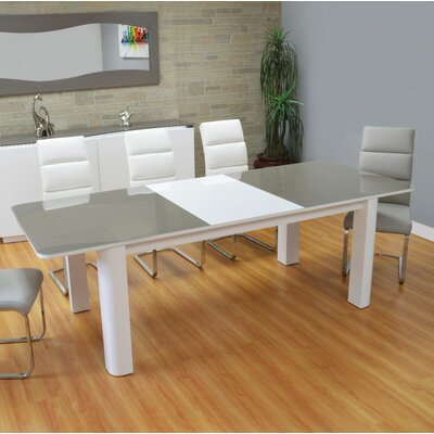 Shayne Extendable Dining Table Color: Gray