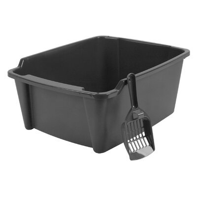 Randolph High Sided with Scoop Litter Pan Color: Gray