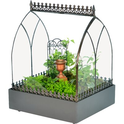 Wardian Glass Terrarium