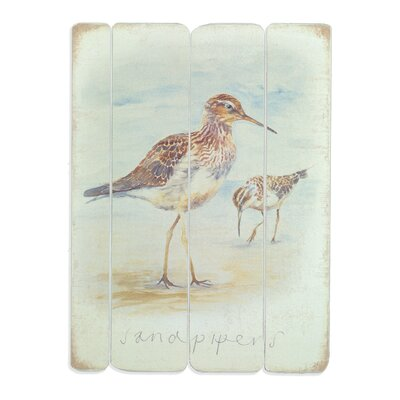 Art Marketing Sandpipers by Nicola Watters Art Print on Canvas