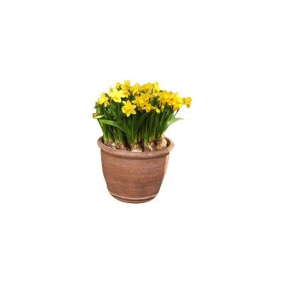 Heritage Traders Round Pot Planter