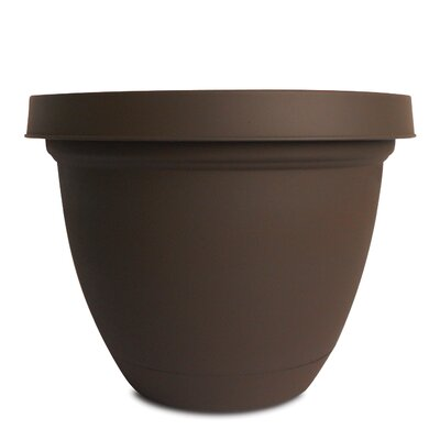 "Infinity Self-Watering Vinyl Pot Planter with Saucer (Set of 4) Color: Chocolate, Size: 19.9"" H x 26.16"" W x 26.16"" D"