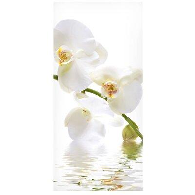 Mantiburi Paneel White Orchid Waters Photodruck