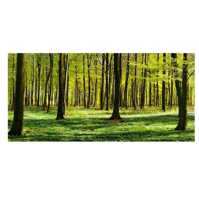 Mantiburi Paneel Waldwiese Photodruck