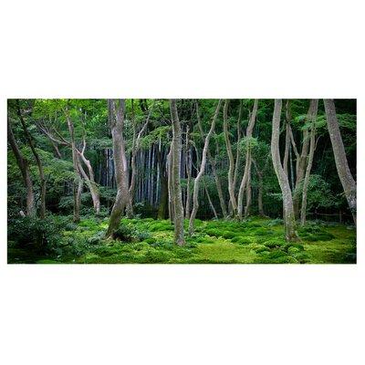 Mantiburi Paneel Japanischer Wald Photodruck