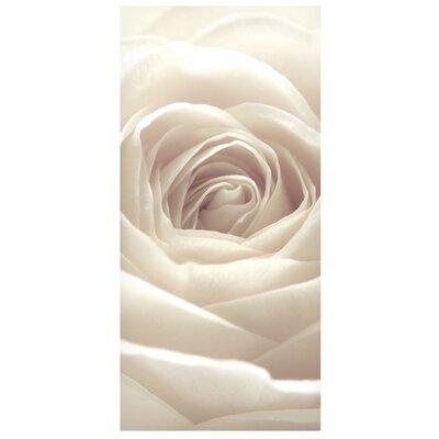 Mantiburi Paneel Pretty White Rose Photodruck