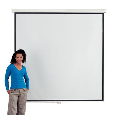 Metroplan White Manual Projection Screen