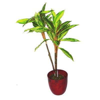 Geko Products Artificial Dracaena Plant