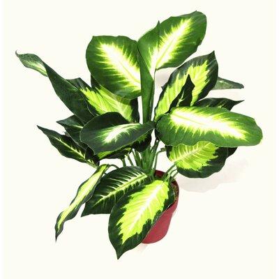 Geko Products Artificial Dieffenbachia Plant