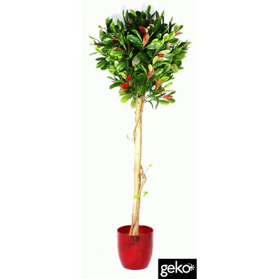 Geko Products Artificial Varigated Ficus Topiary Plant