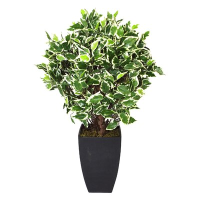 Geko Products Artificial Variegated Ficus Ball Plant and Pot