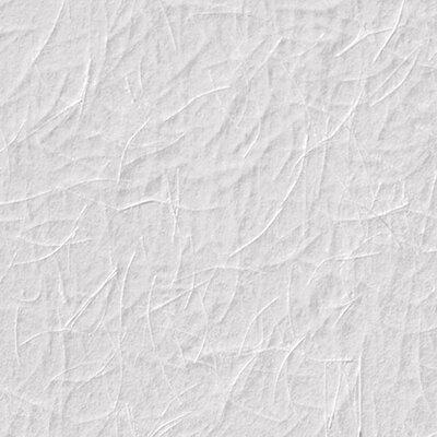 Anaglypta Armadillo 25m L x 75cm W Roll Wallpaper